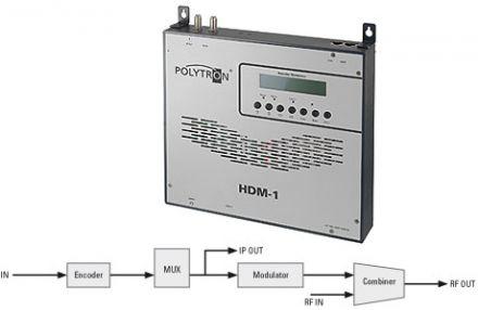 HDM-1 T